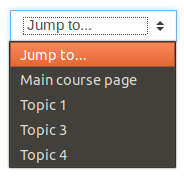 The 'Jump to' menu shown on the single section page that is used for navigation.